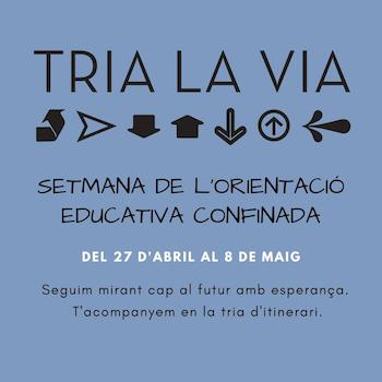 trialavia_data